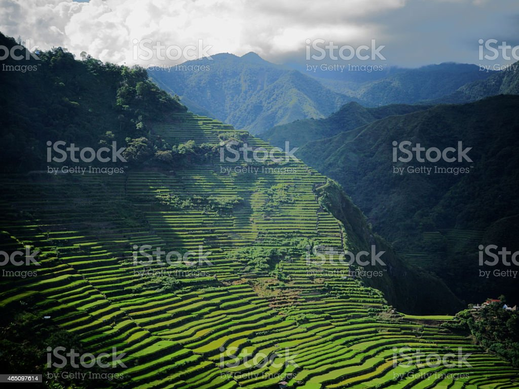 Phenomenal rice terraces in Batad, the Philippines stock photo