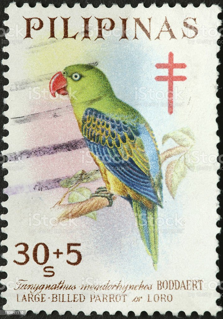Philippine large billed parrot on a postage stamp royalty-free stock photo
