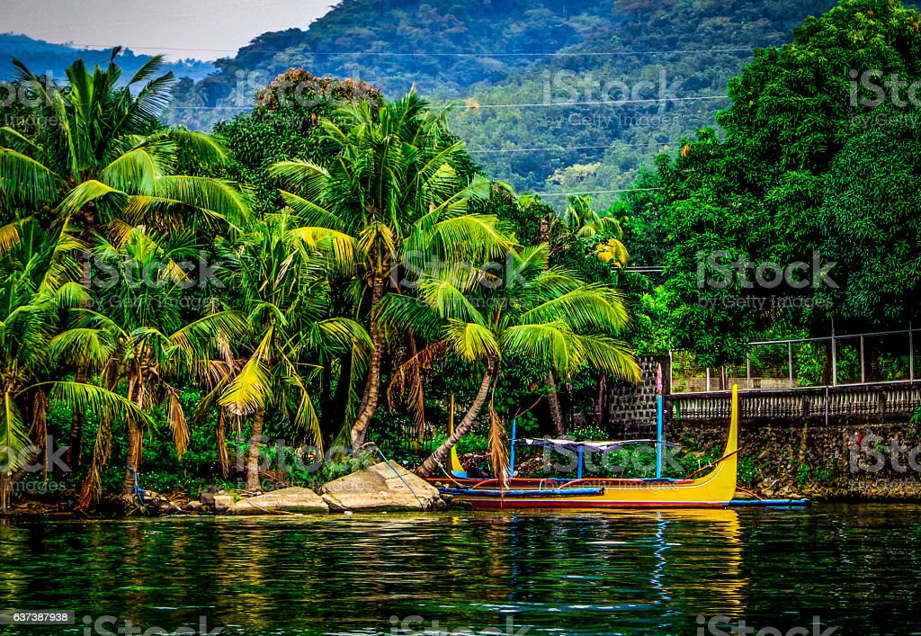 Philippine Outrigger on Taal Lake with Palm Trees stock photo