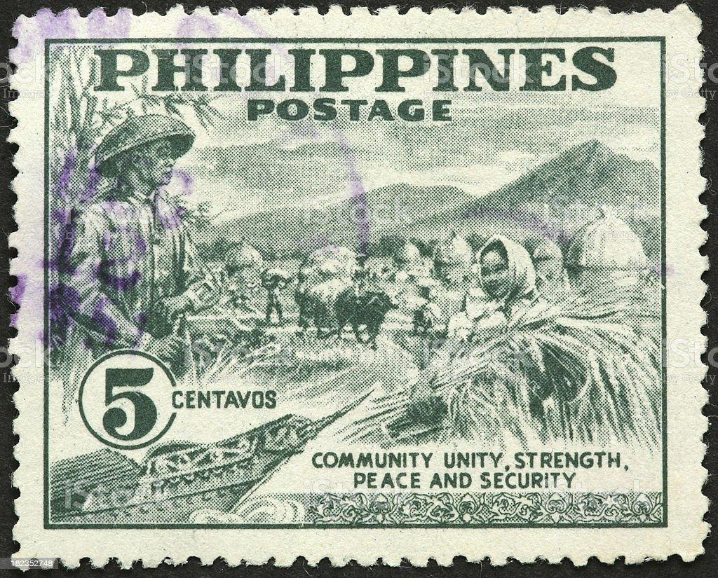 Philippines grain harvest royalty-free stock photo