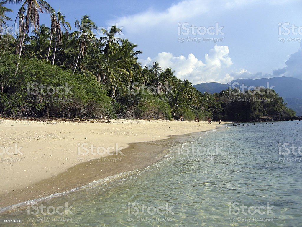 phillipines tropical beach palm trees stock photo