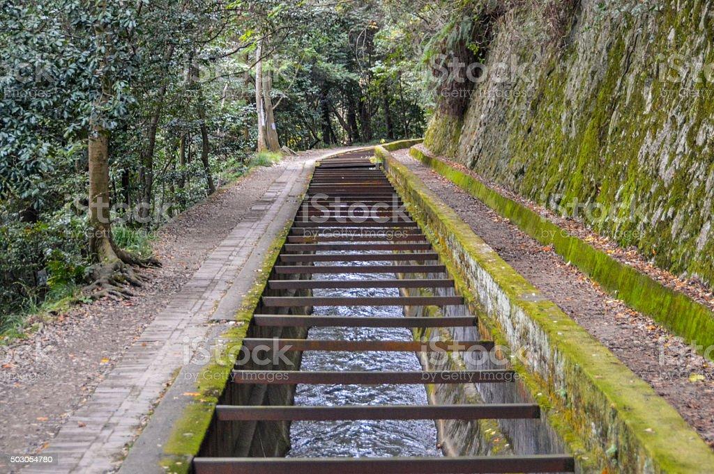 Philosopher's Path in Kyoto, Japan stock photo