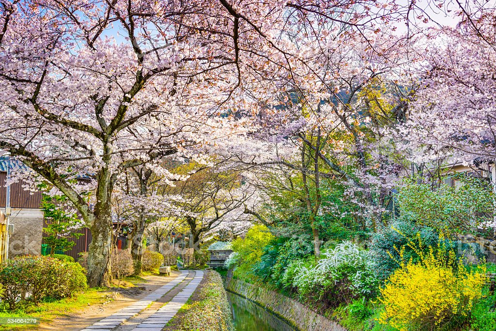 Philosopher's Way in Kyoto stock photo
