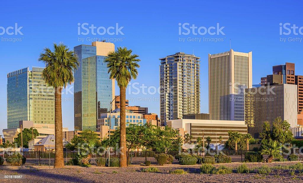 Phoenix Arizona downtown skyline skyscrapers, palm trees during golden hour stock photo