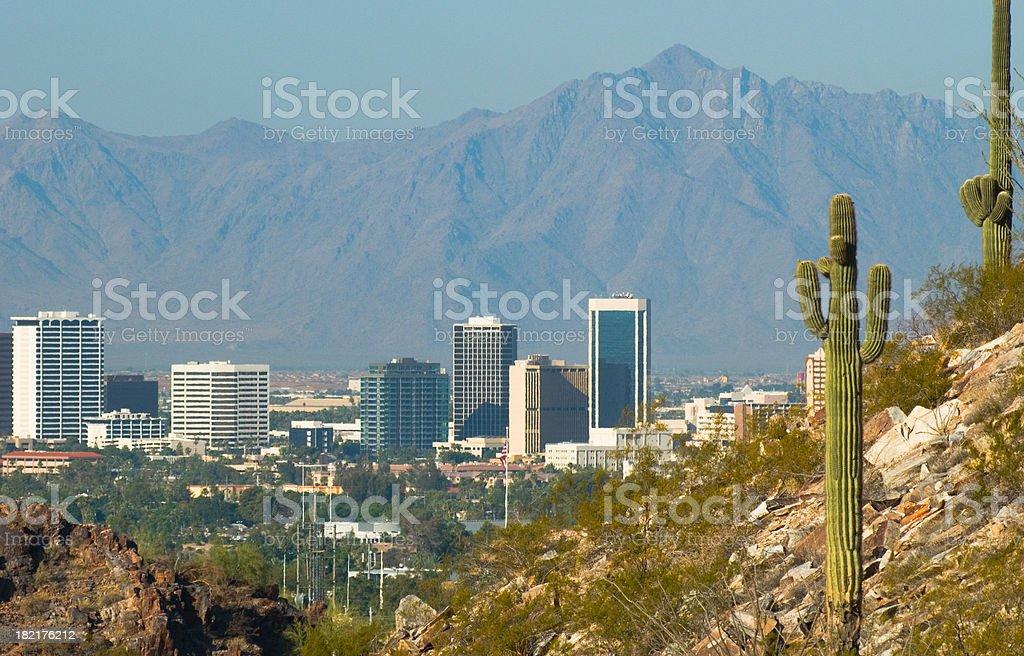Phoenix skyline and cactus royalty-free stock photo
