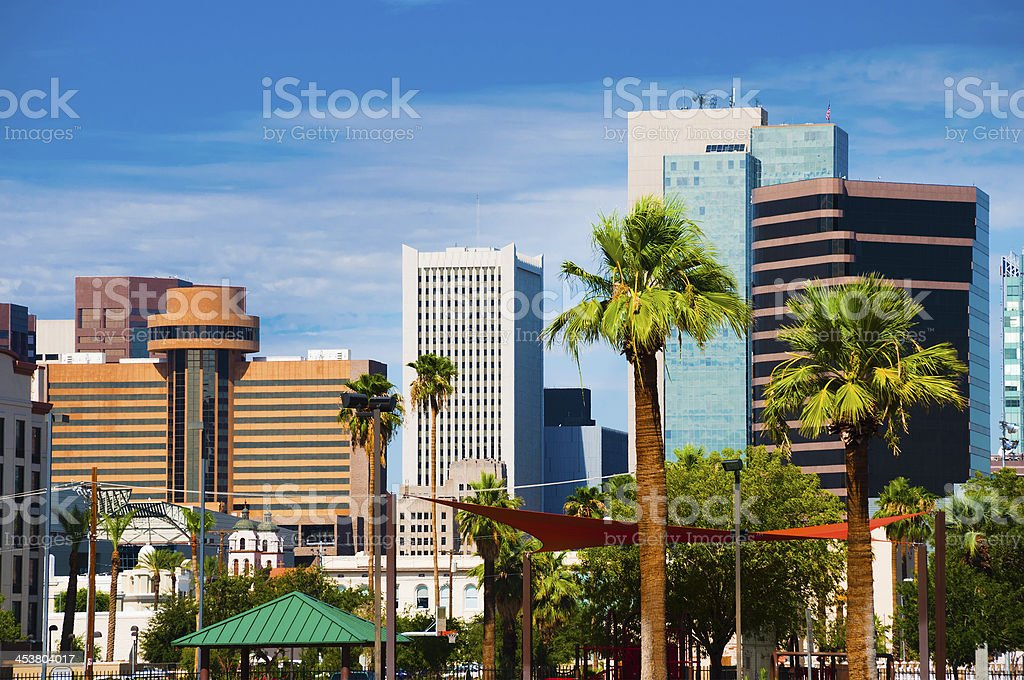 Phoenix skyline and palm trees closeup royalty-free stock photo