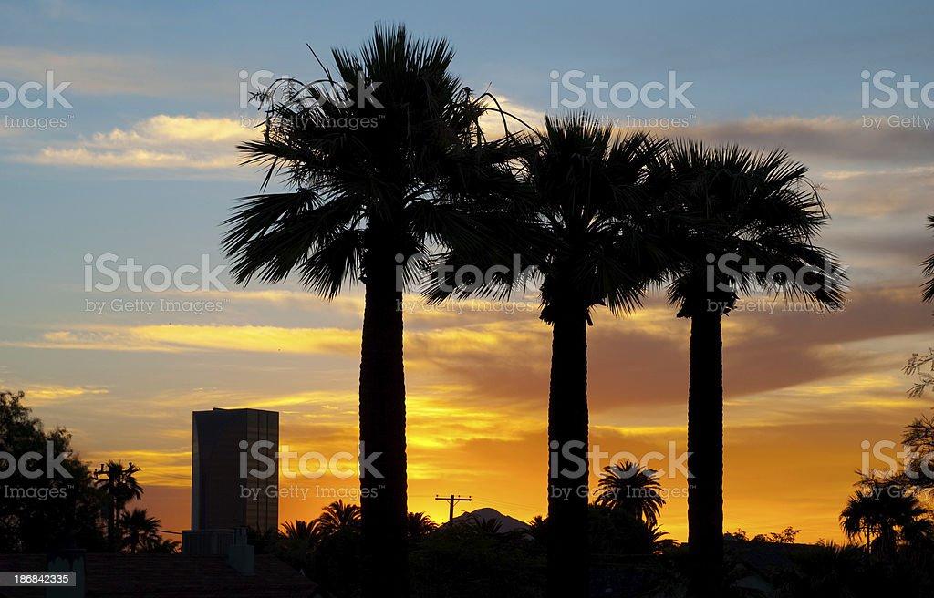 Phoenix sunrise royalty-free stock photo