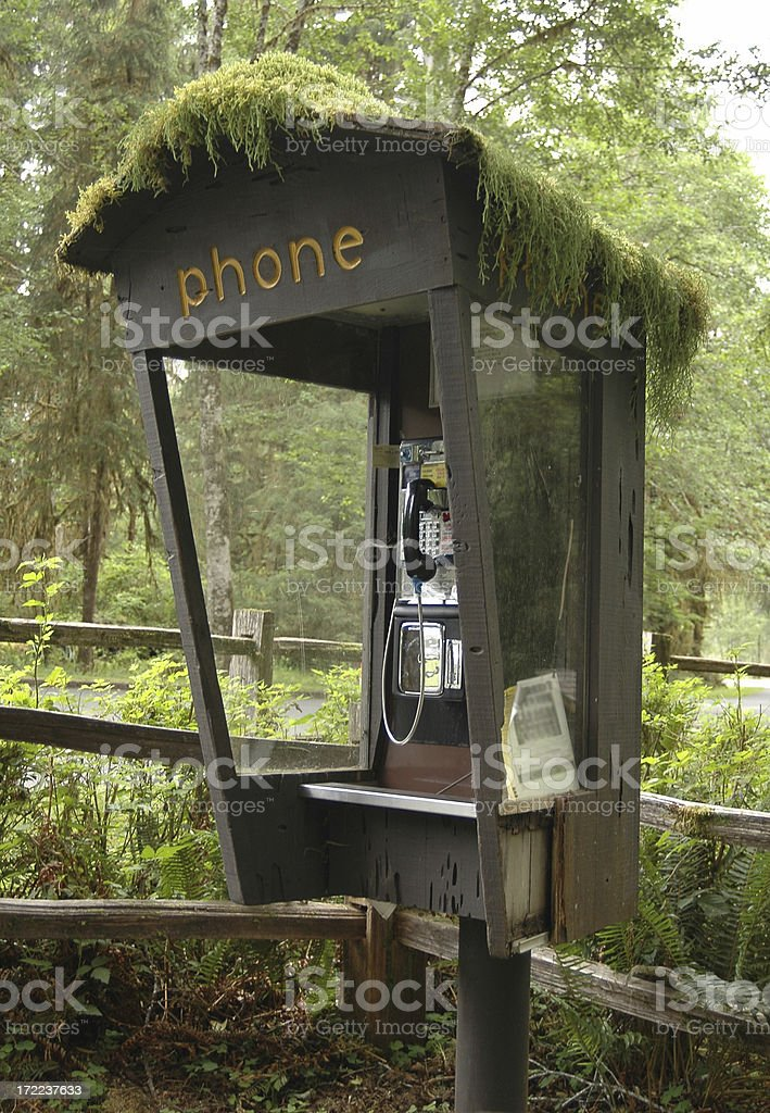 Phone Booth in the forest royalty-free stock photo