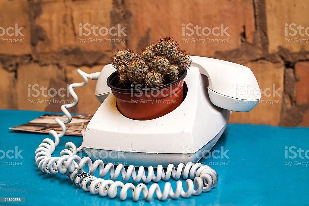 phone, flower pot art space stock photo