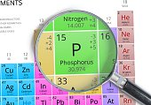 Phosphorus - Element of Mendeleev Periodic table magnified with magnifier