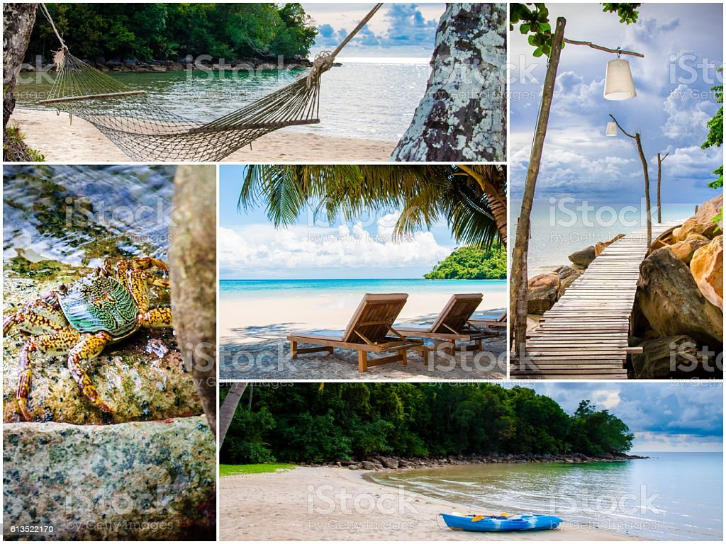 Photo collage of tropical beach with palm trees stock photo