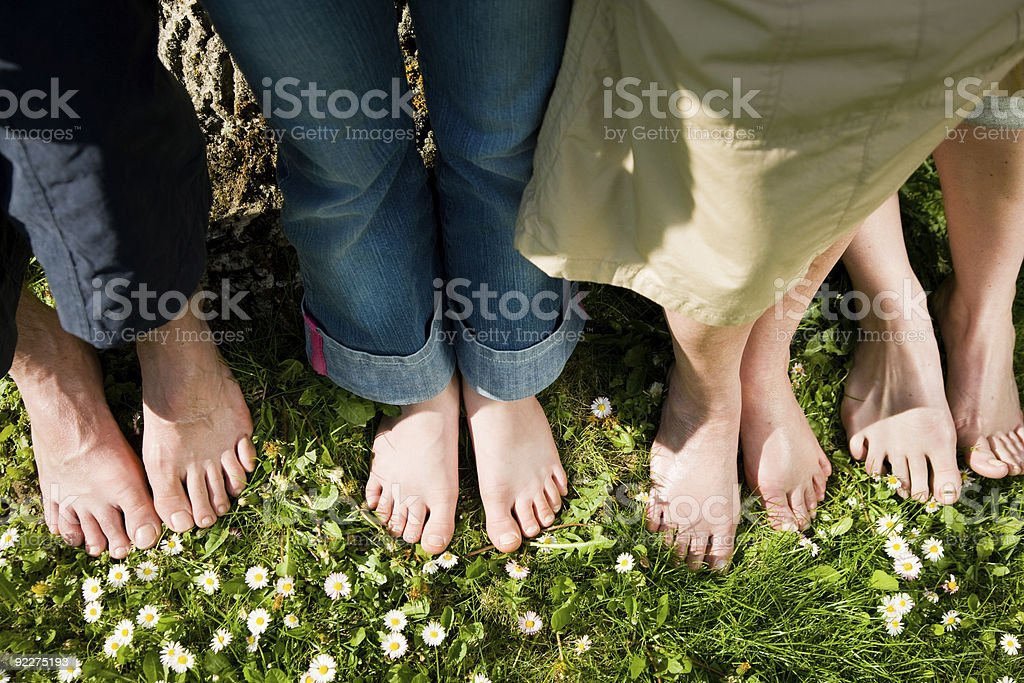 Photo of a family's bare feet in grass stock photo