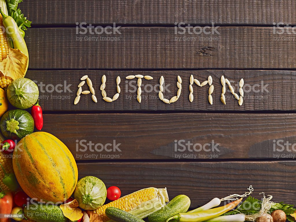 Photo of different autumn vegetables on wooden table. stock photo
