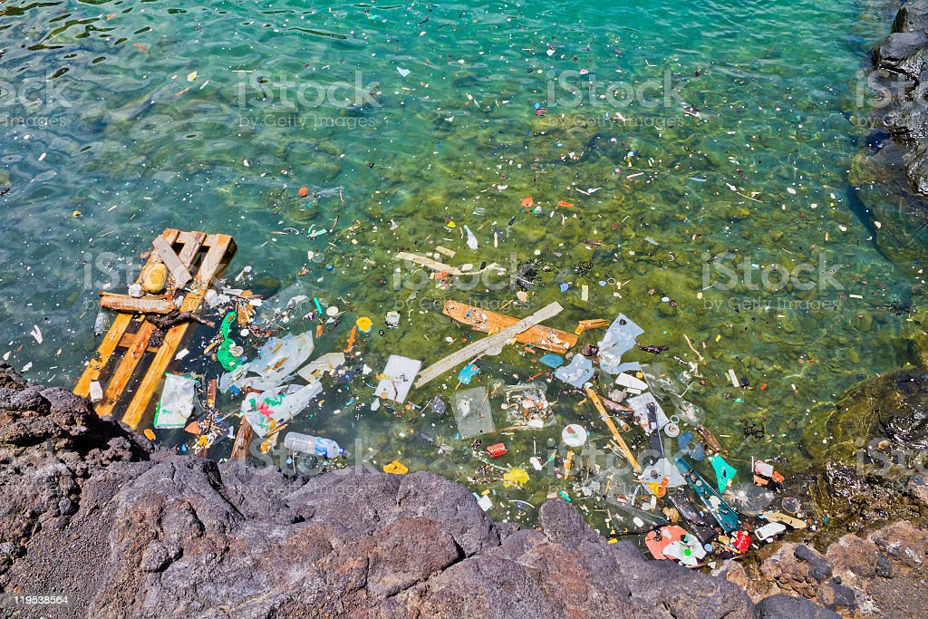 Photo of garbage floating in the shoreline water stock photo