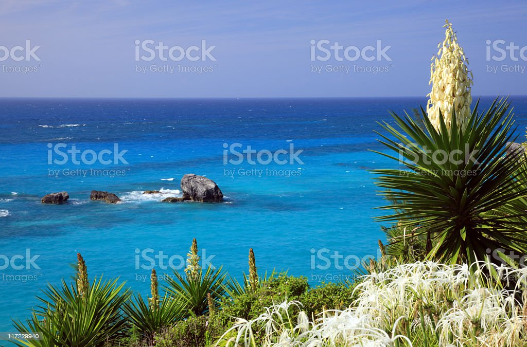 Photo of the Bermuda shoreline with navy blue waters royalty-free stock photo