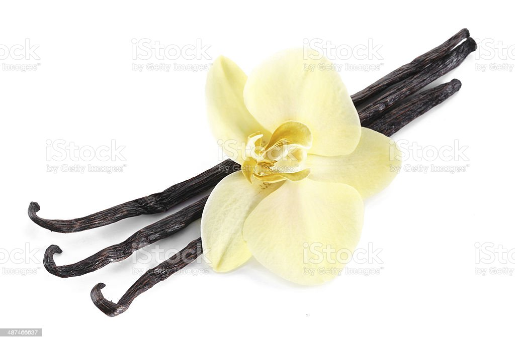 Photo of vanilla sticks with a flower. stock photo