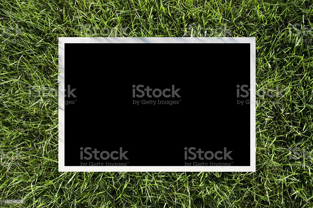 Photo on the grass stock photo