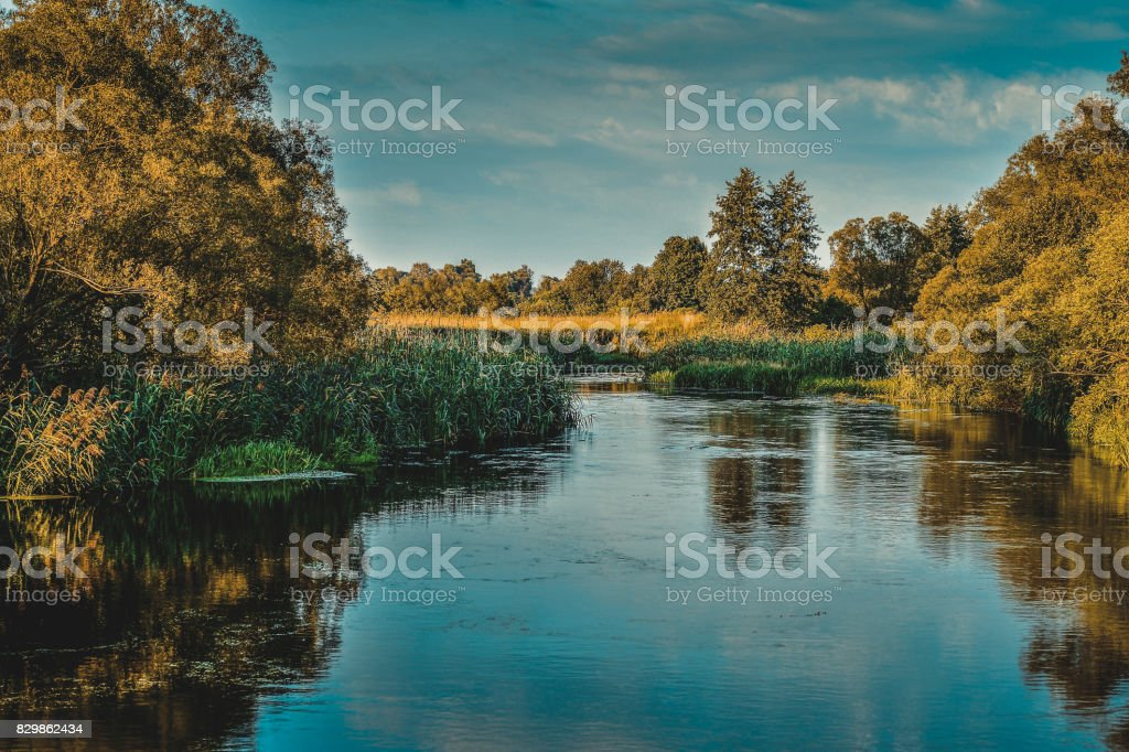 Photo with a river on a clear summer day, landscape stock photo