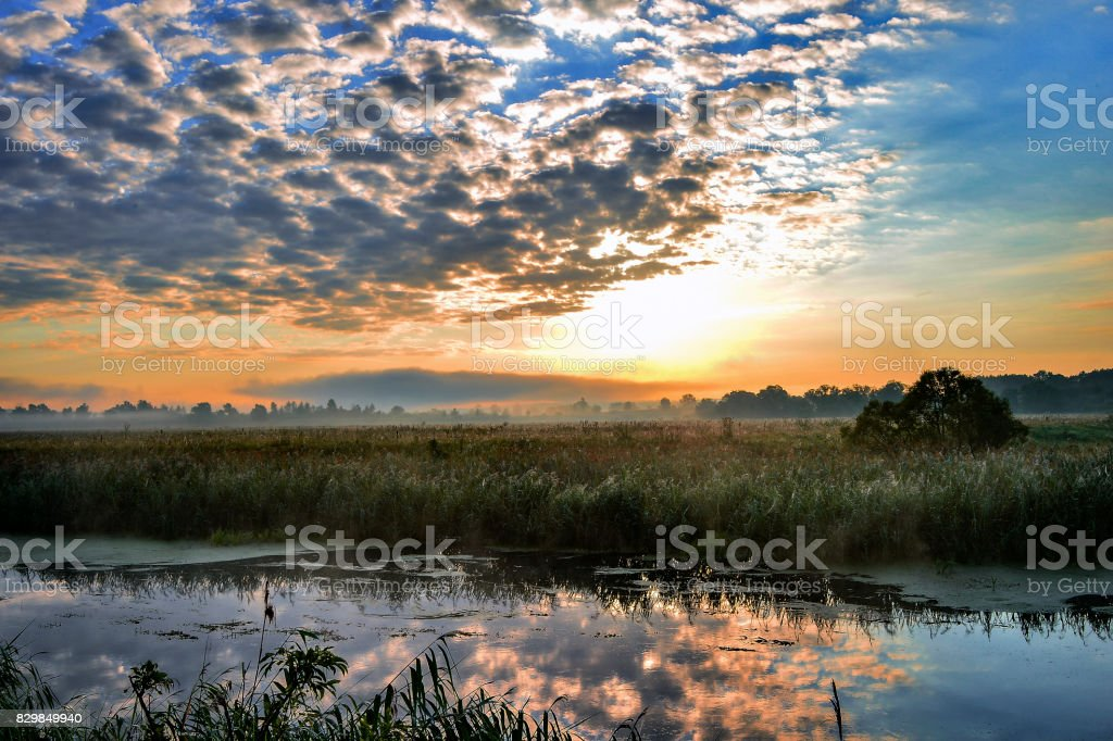 Photo with a sunny summer sunrise over the river stock photo