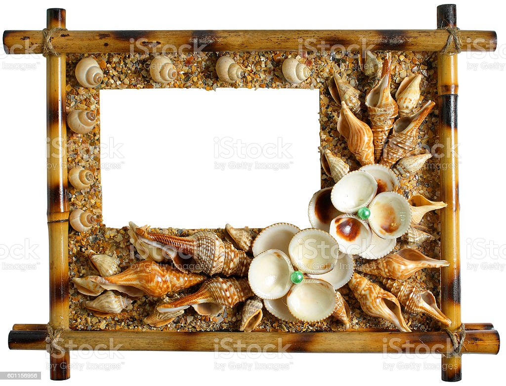 Photoframework from sea cockleshells and pearls stock photo
