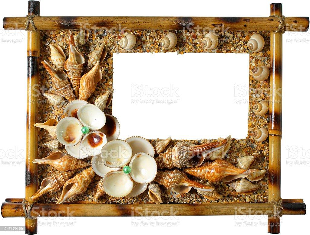Photoframework from sea cockleshells on white background stock photo