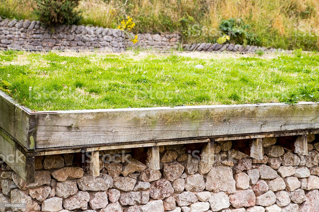 Photograph of a Green Roof royalty-free stock photo