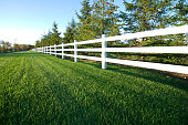 Photograph of a picket white fence