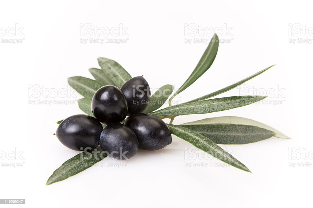 Photograph of olives with their leaves stock photo