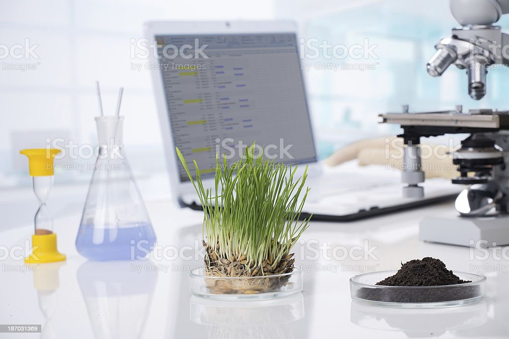 A photograph of some biotechnology items on a white desk royalty-free stock photo