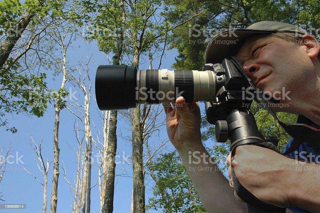 Photographer Focusing royalty-free stock photo