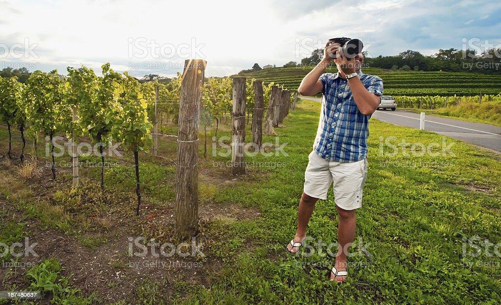 Photographer in Slovenian Vineyard stock photo