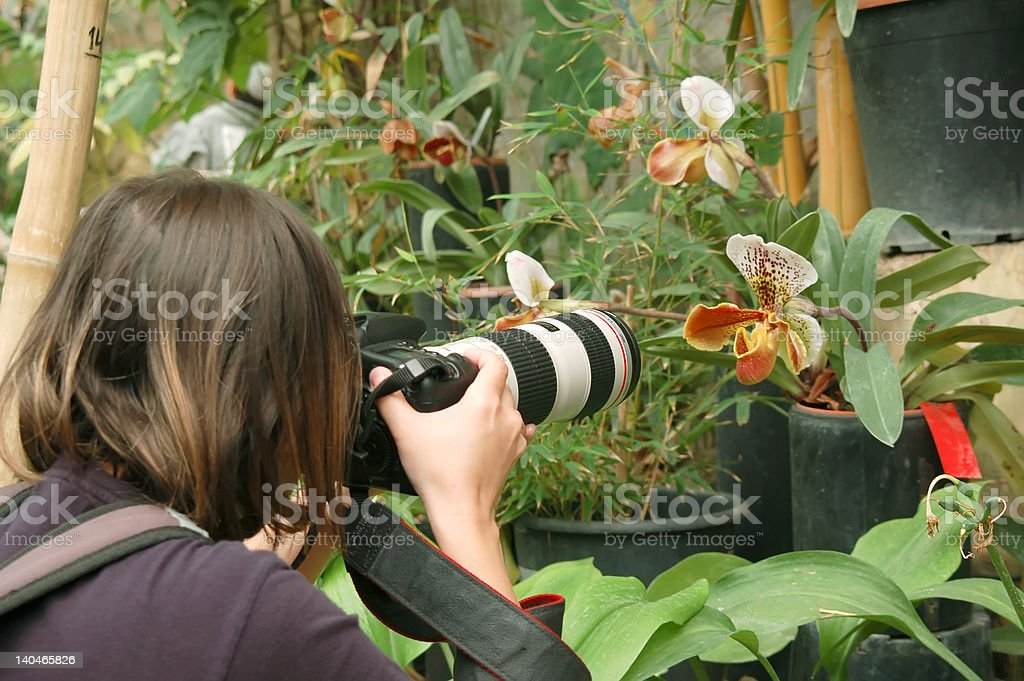 photographer in tropic garden royalty-free stock photo