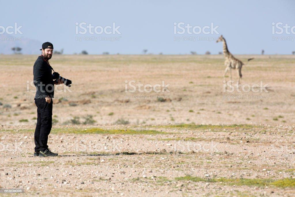 A photographer standing by a giraffe stock photo