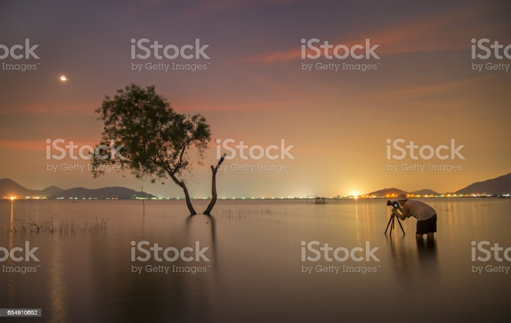 Photographer tak a photo alone alive tree is in the flood of lake at sunset scenery stock photo