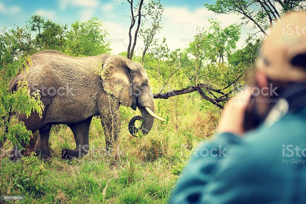 Photographer taking safari pictures stock photo