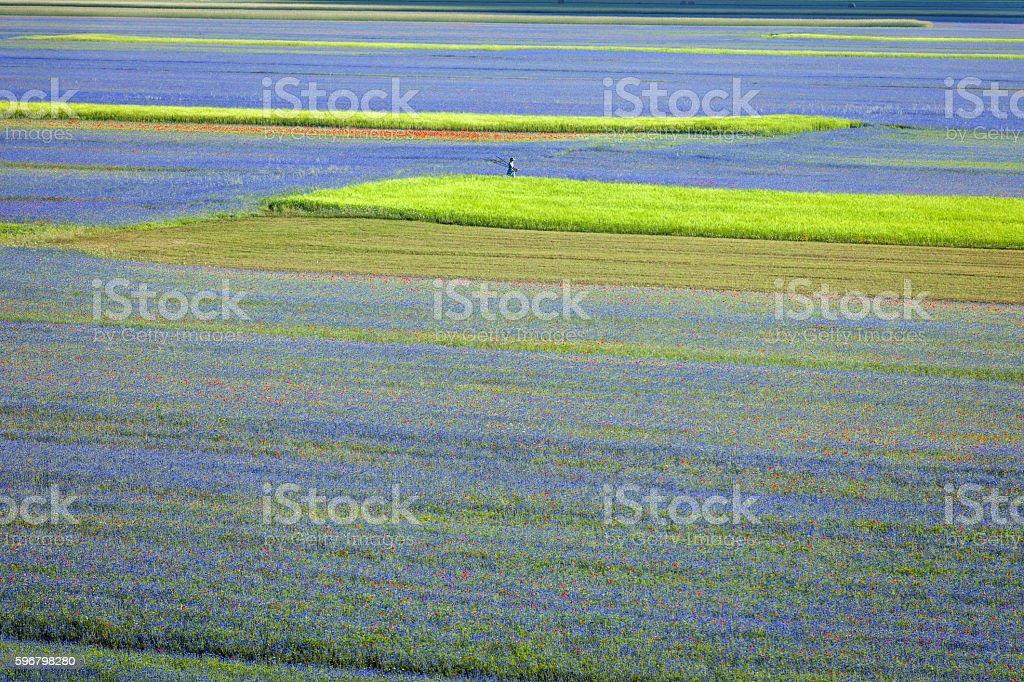 Photographer Wearing Green-Blue Dress near Castelluccio, Italy stock photo