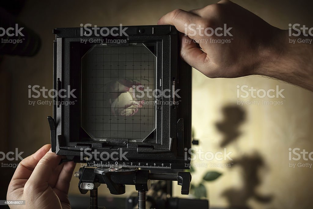 Photographer works by photographing a rose stock photo