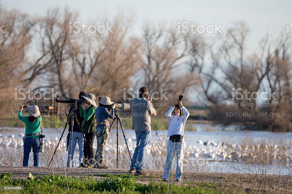 Photographers and Tourists at Merced National Wildlife Refuge, California stock photo