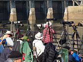 Photographers at Conowingo Dam for annual eagle migration