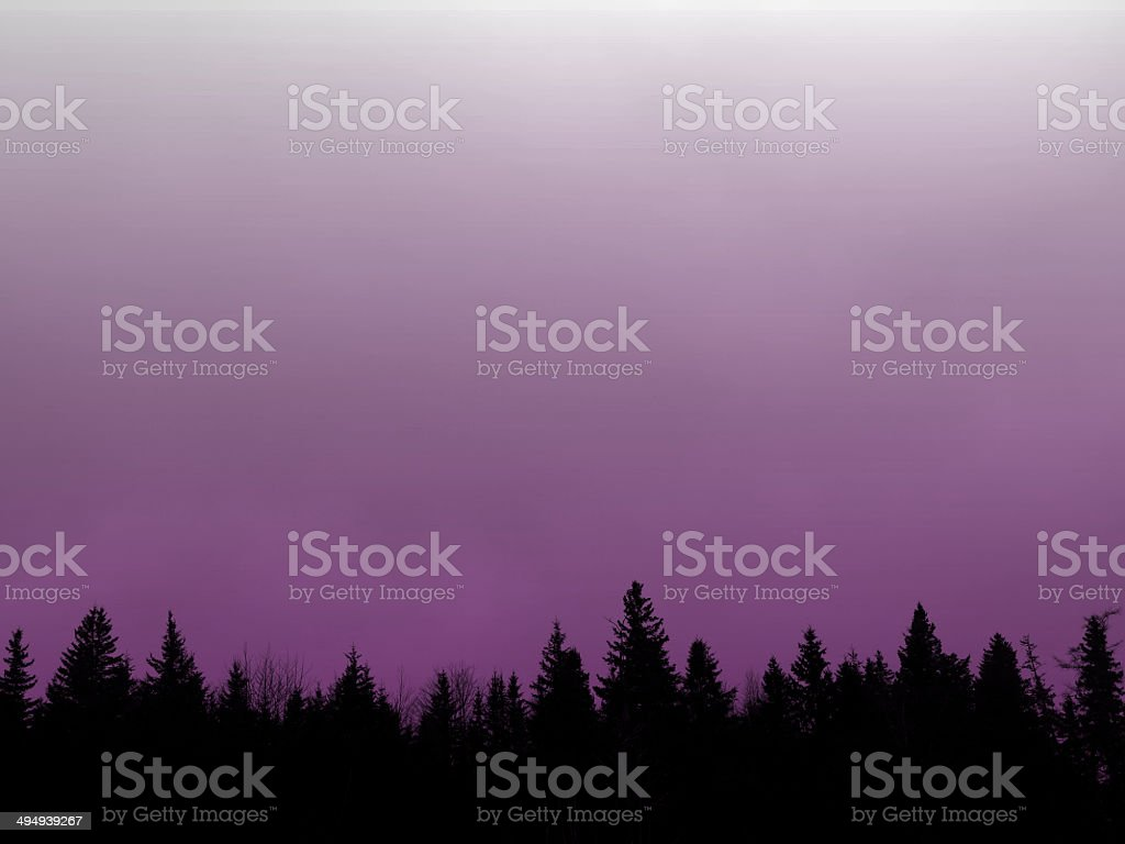 Photographic Filter Purple Sky with Tree Line on Bottom stock photo