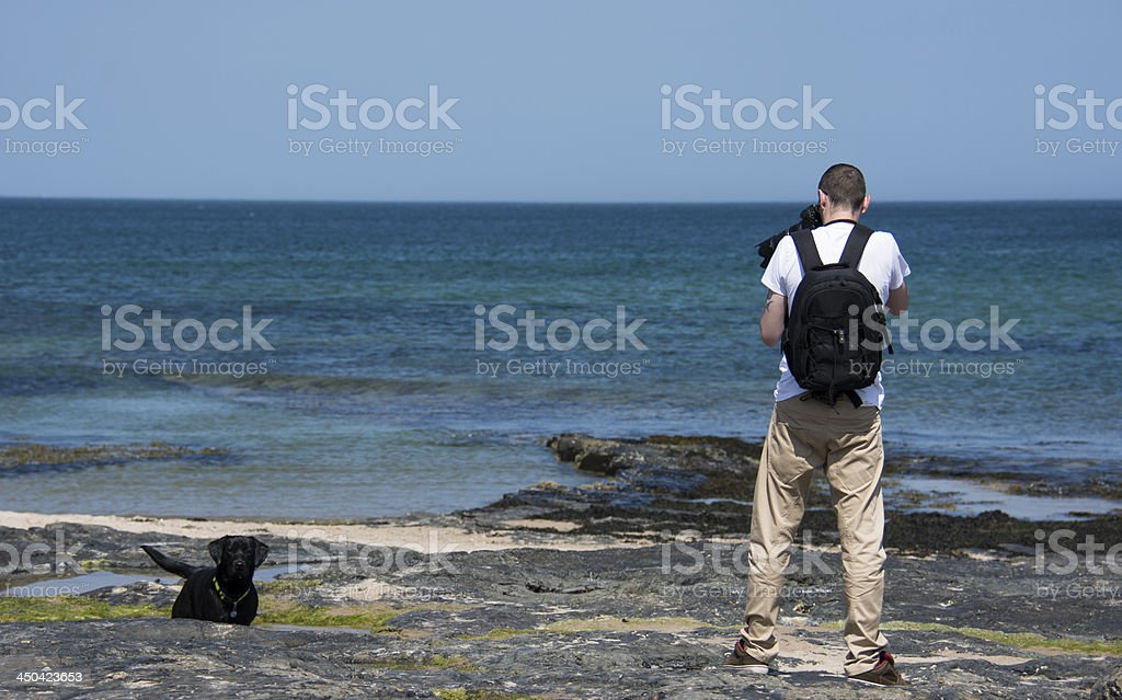 Photographing a Dog By the Seaside royalty-free stock photo