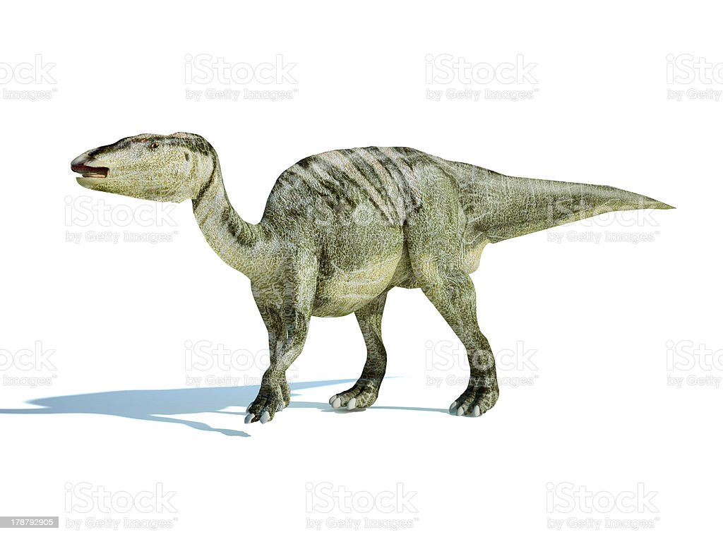 Photorealistic 3D rendering of an Edmontosaurus. At white background. stock photo