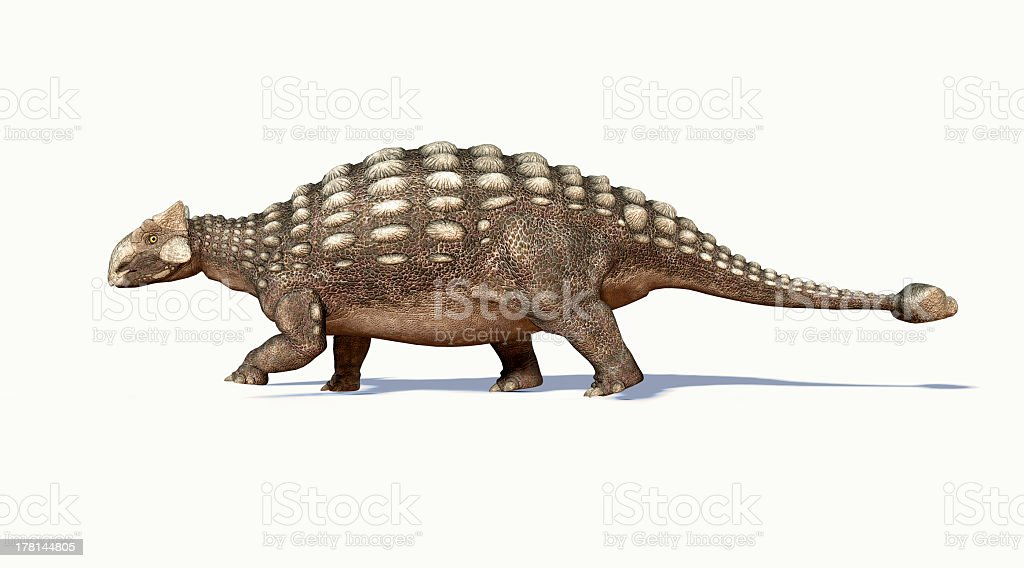 3D photorealistic rendering of side view of Ankylosaurus stock photo