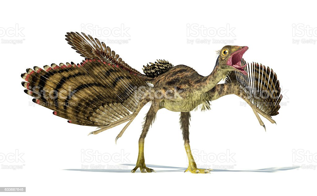 Photorealistic representation of an Archaeopteryx dinosaur. stock photo