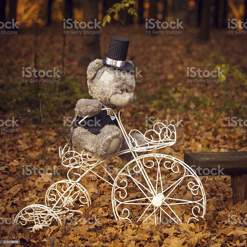 Fotos im Herbst Wald Lizenzfreies stock-foto