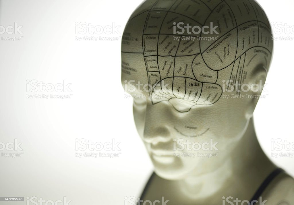 Phrenology Sculpture stock photo