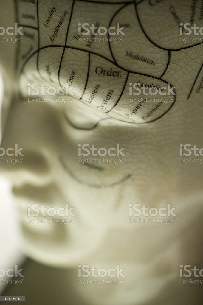 Phrenology Sculpture royalty-free stock photo