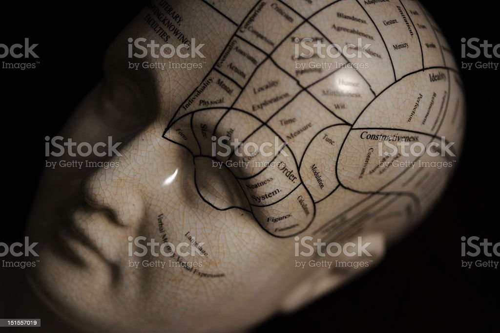 A phrenology sculpture with markings on the top of the head royalty-free stock photo