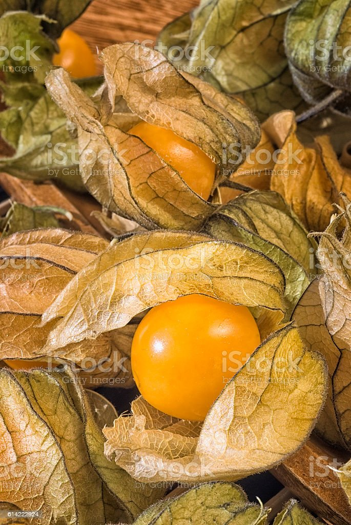 Physalis fruit (Physalis peruviana) also called Cape gooseberry, stock photo