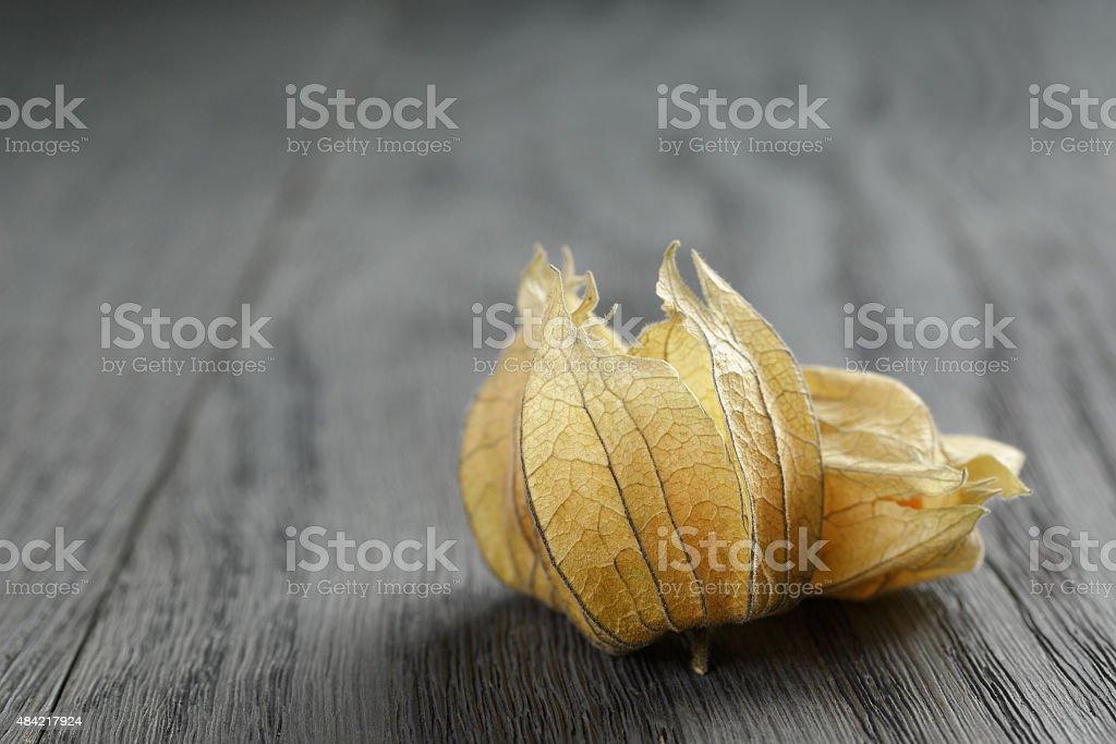 Physalis fruit on oak wooden table stock photo